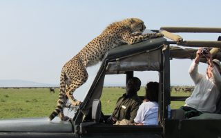 7 Day Kenya and Tanzania Safari