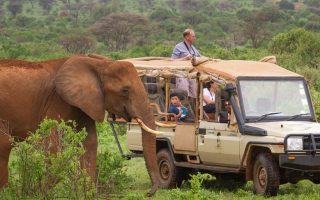 10 Days Best of East Africa safari