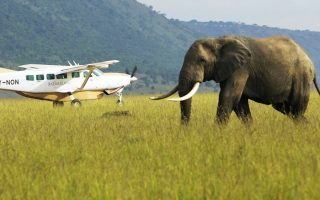 3 Days Masai Mara Fly-In Safari