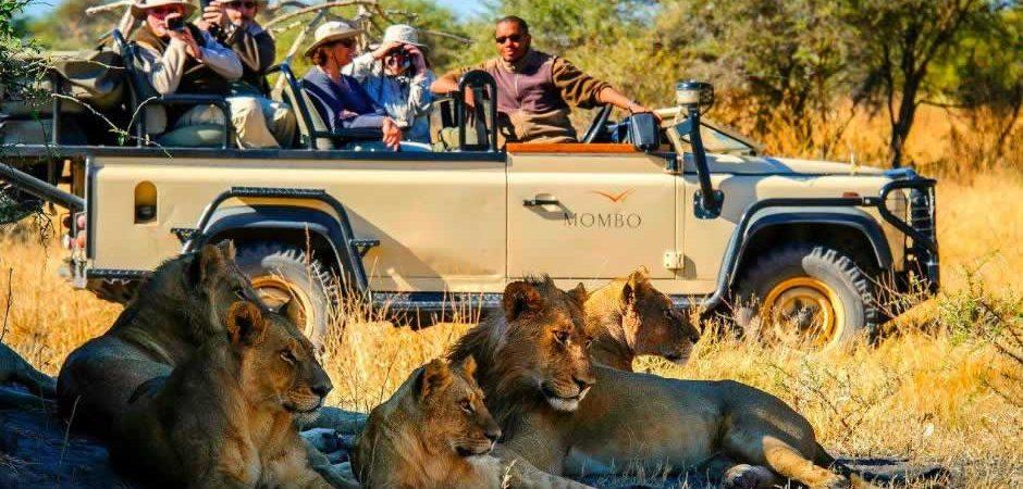 10 Days Best to Explore Kenya Safari