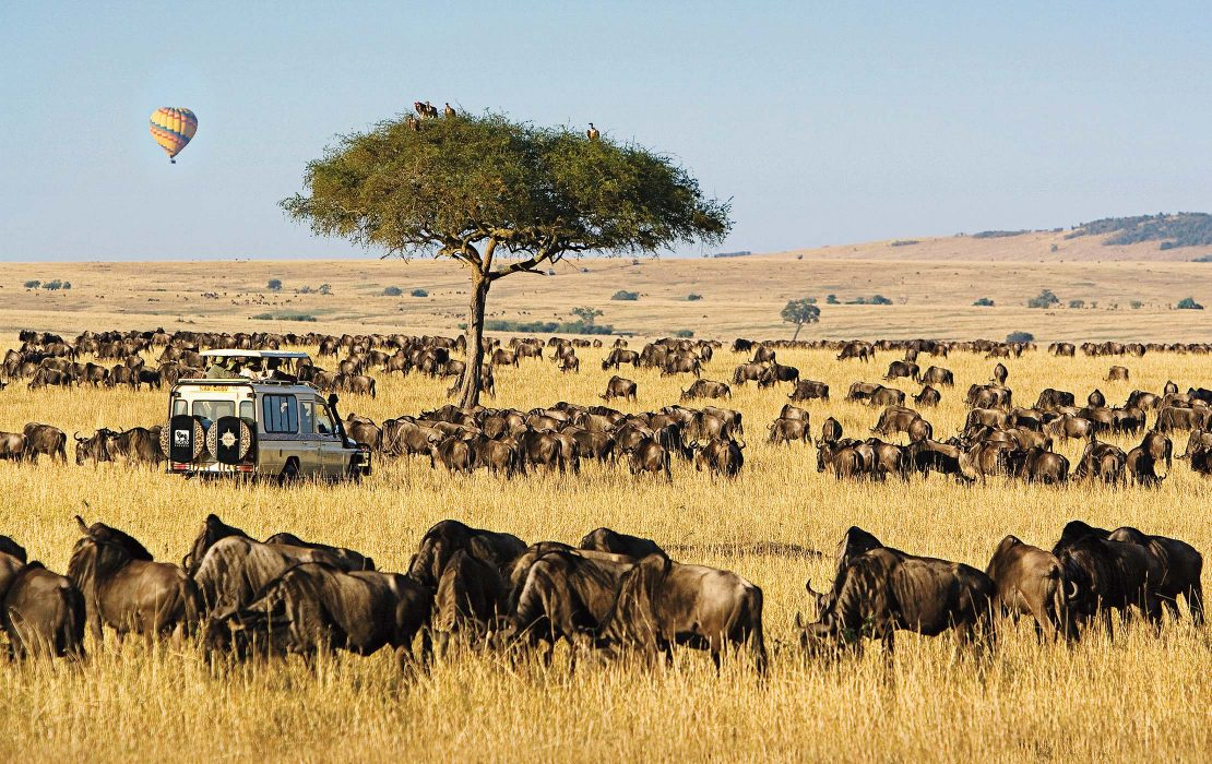 All about Masai Mara National Reserve fees